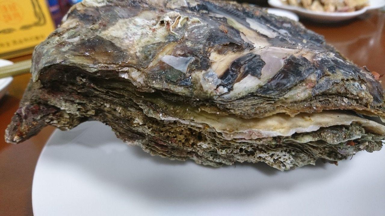でかい岩牡蠣